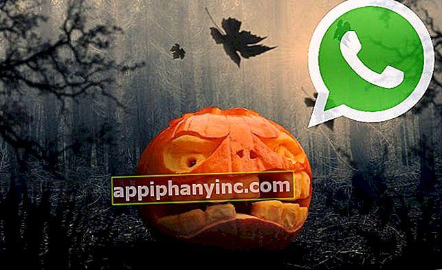 Halloween-emoji kommer til WhatsApp Ikke gå glipp av dem!