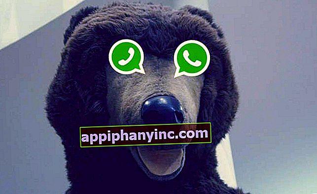 En ny hoax: WhatsApp blir nok en gang betalt (og de er allerede ...)