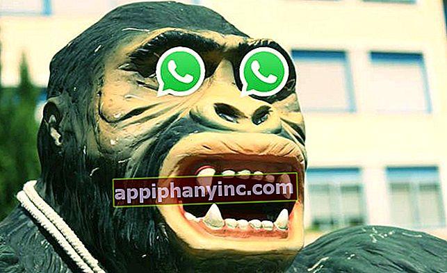 Den nye svindelen i WhatsApp: meldingen til den falske regissøren