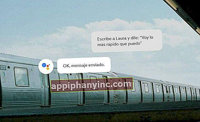OK Google! Topp 100 Google Assistant-talekommandoer
