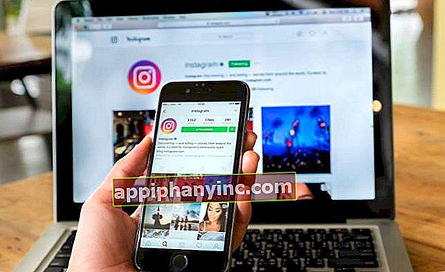 Kuinka ladata Instagram-valokuvia tietokoneelle ja Androidille
