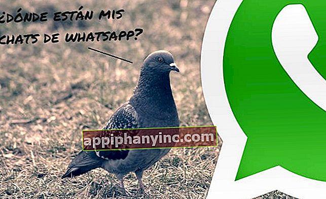 Kuinka palauttaa WhatsApp-chatit Androidissa