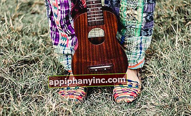 50 spletnih tečajev za brezplačno učenje igranja ukulele
