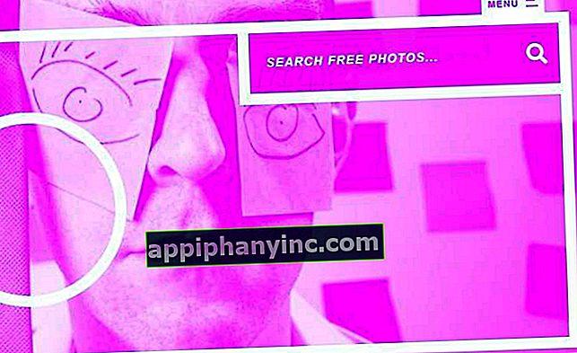 De bästa arkiven för att ladda ner gratis bilder