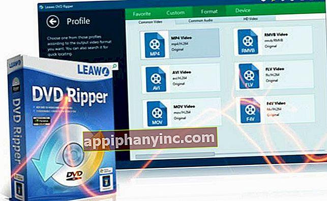 Leawo DVD Ripper: det bästa skrivbordsprogrammet för att rippa DVD-skivor